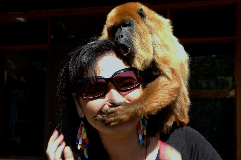 woman and monkey