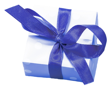 blue box ribbon_Schwarzenarzisse