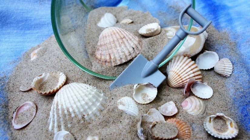 shells-sand_pasja1000